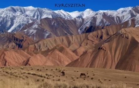 Tajik (1)